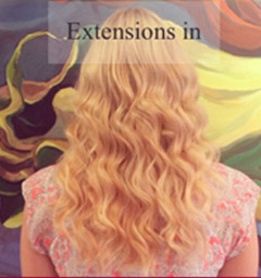 extensions-in